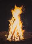 het vuur.jpg